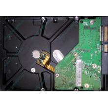 Б/У жёсткий диск 500Gb Western Digital WD5000AVVS (WD AV-GP 500 GB) 5400 rpm SATA (Ногинск)